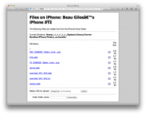 iPhoneFS4